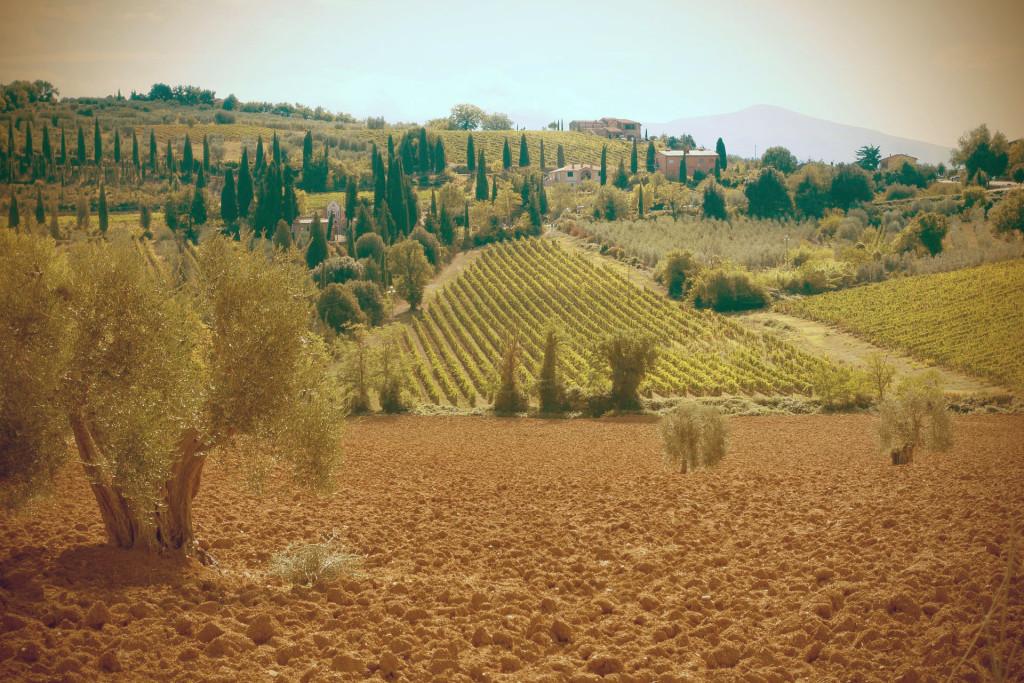Turismo_Gastronômico_na_Itália_Toscana